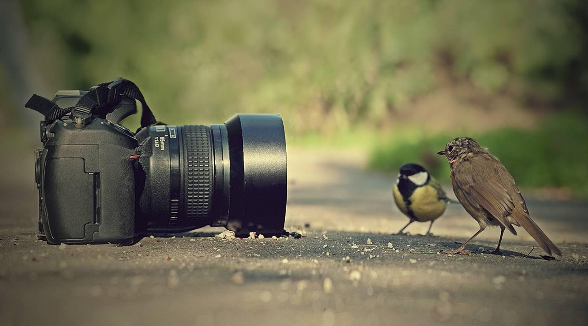 фотоаппарати
