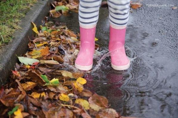 фотоснимок дождливого дня